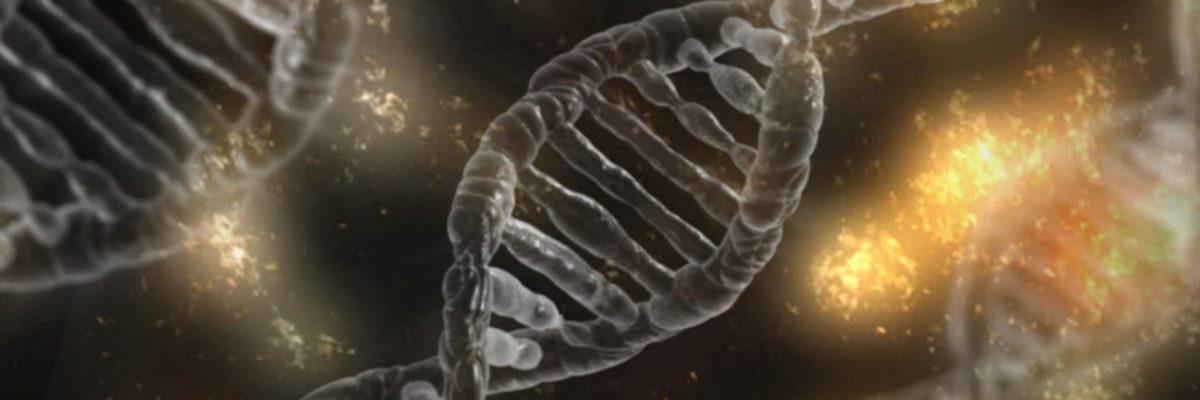 ADN test recherche genealogie detective enquete preuve